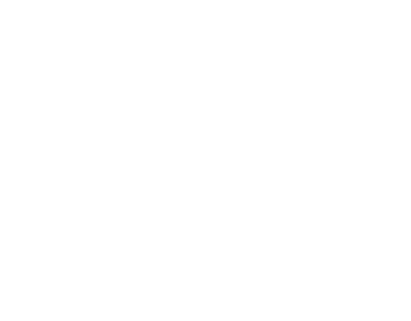 Blink logo white