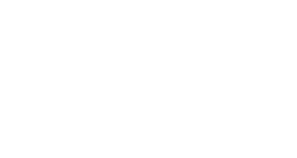 The Lee Group logo
